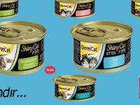 En Ucuz Yaş Kedi Maması Fiyatları için Adresiniz Pettema!