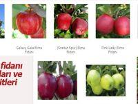 Elma Fidanı Fiyatları ve Çeşitleri www.fidanci.com.tr'de!