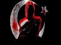 Ayyıldız Tİm PKK sitelerini çökertti!