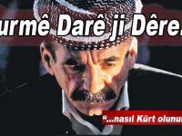 Kurmê Darê ji Dêre*