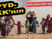PYD-PKK'nın Müslüman Kürt düşmanlığı!