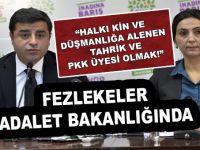 """PKK'nın """"Eşbaşkanları""""nın dosyaları Adalet Bakanlığında!"""