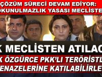 Çözüm süreci devam ediyor; PKK Meclisten atılacak!