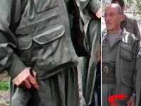 Hem terörist hem de sapıklar! PKK'nın sözde lideri çocuk istismarcısı çıktı!